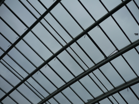 The Great Glasshouse (Detail)